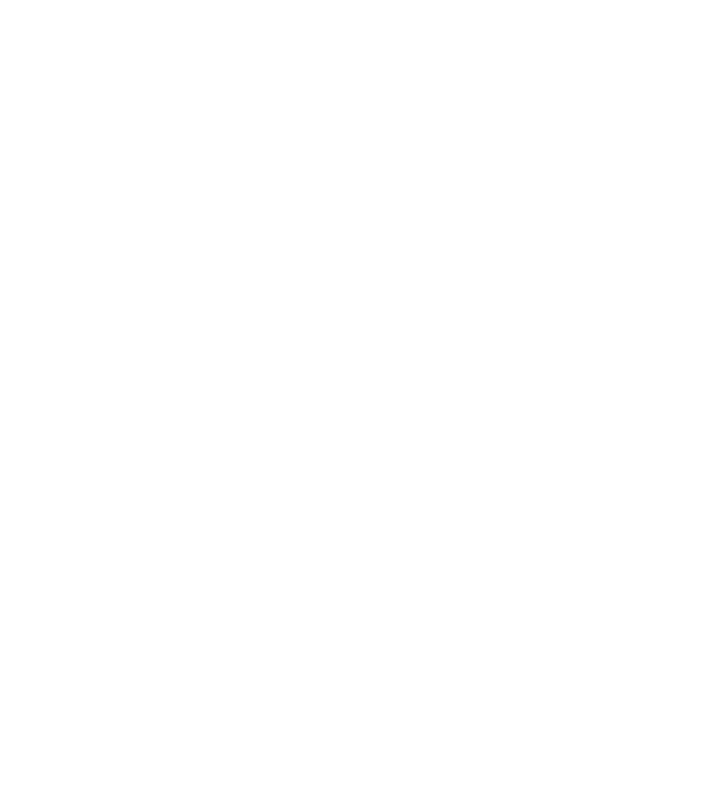 Logo Sant Francesc Palma